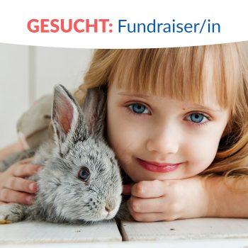Mitarbeiter/in Fundraising (25h) gesucht